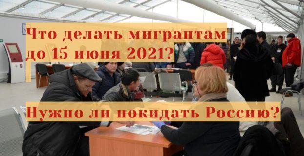 Что делать мигрантам до 15 июня